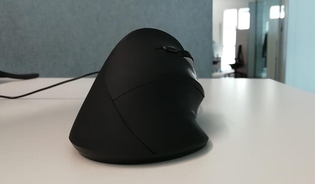 Die Maus aus Sicht des Benutzers.
